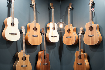 Plucked string instruments, acoustic guitars